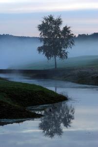 Golfbanan och ån