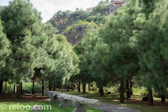 Jardin Botanico Gran Canaria