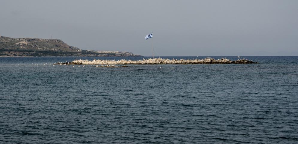 En grekisk ö med fiskmåsar