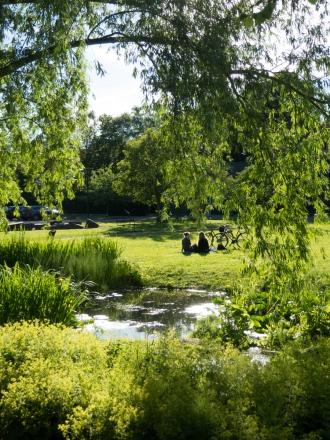 Norrköpings park